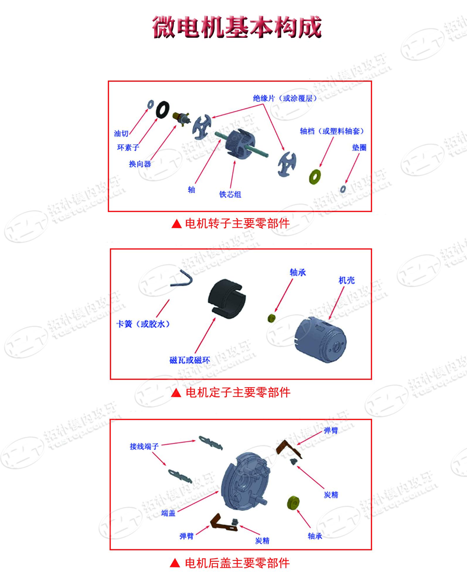 微型电机基本构成-东莞拓朴